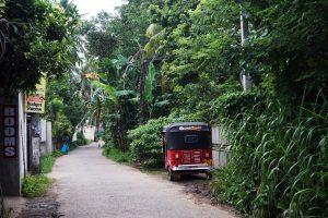 Sri Lanka Part II: Als Solo-Travellerin in Sri Lanka